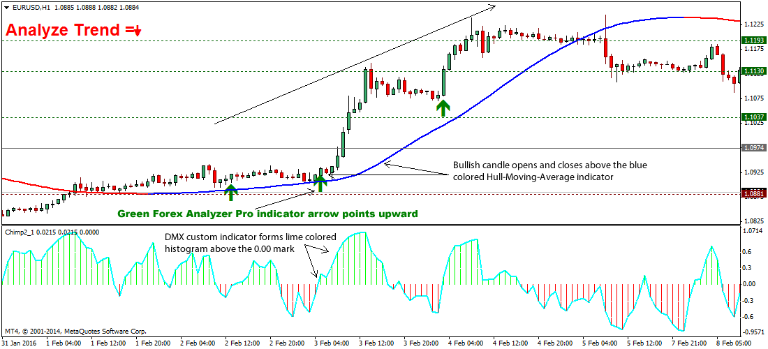 piranha-forex-tradingstrategy1